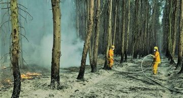 Socialist planning needed to manage bushfire threat
