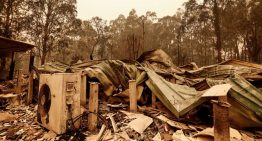 Grubby insurers rip-off bushfire victims