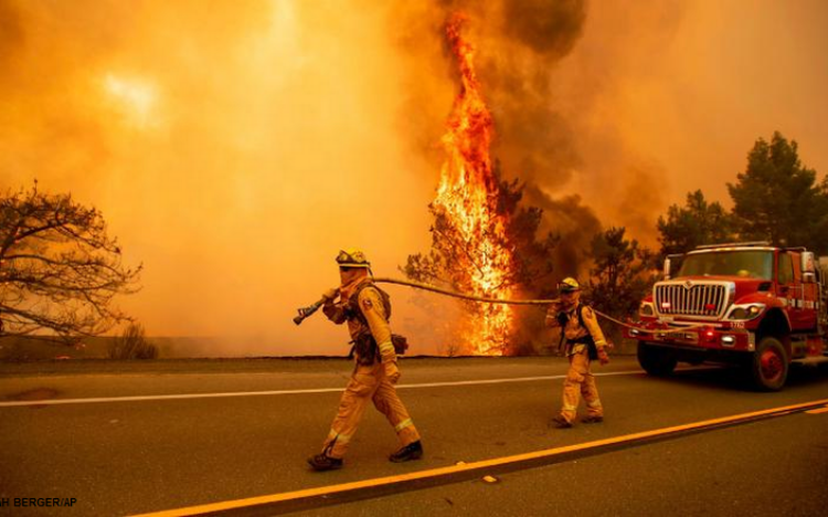 Capitalism: Inadequate in the face of bushfire disaster