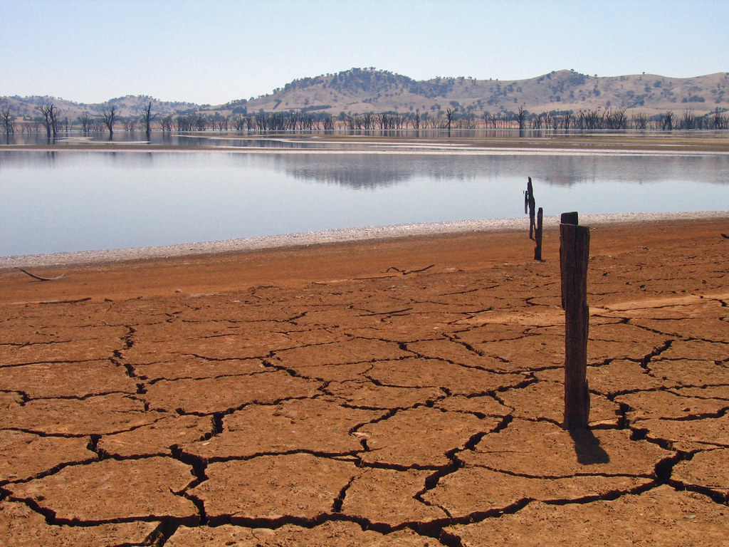 Drought: Government tinkering at edges