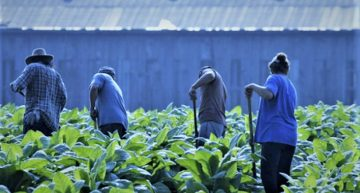 Migrant workers need more rights