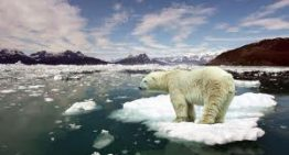 Rising fears of global warming
